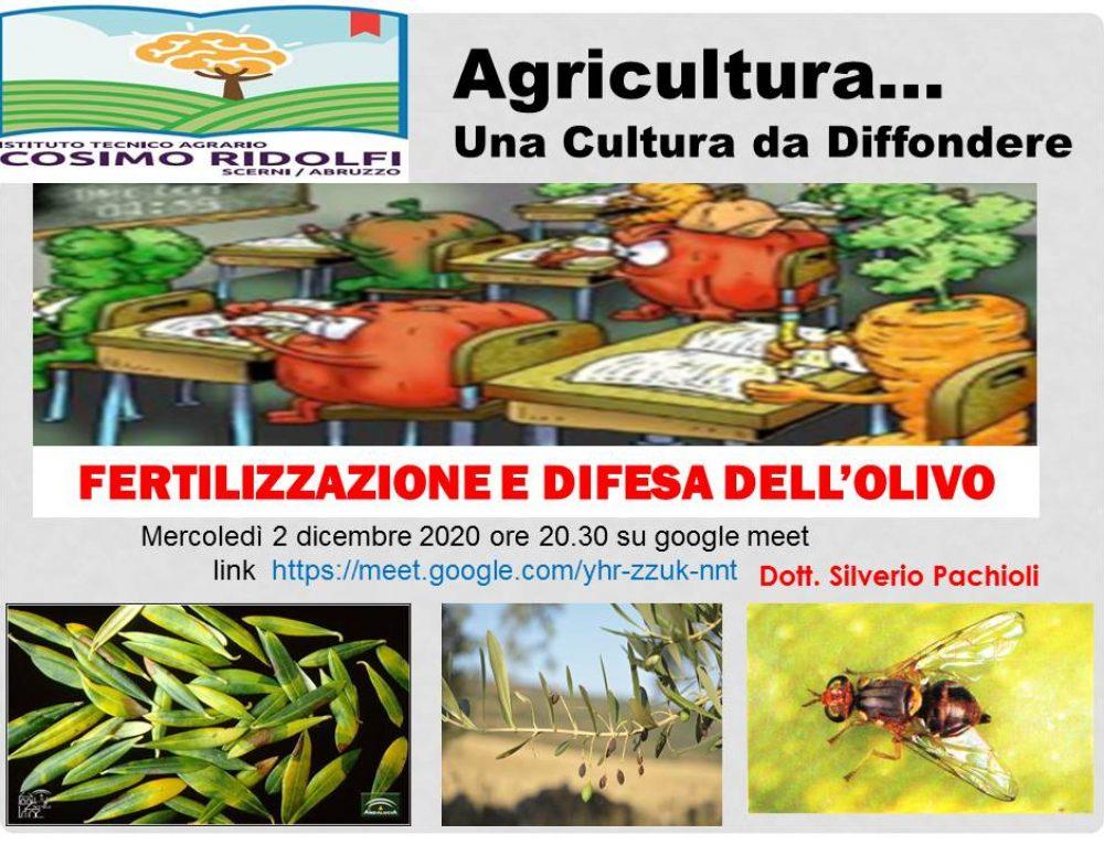 Prof. Silverio Pachioli – Fertilizzazione e difesa dell'olivo